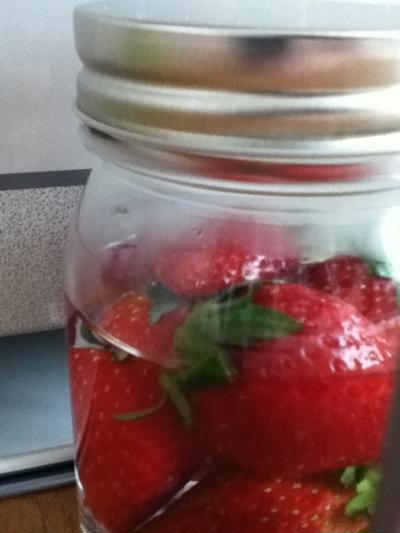イチゴ酵母、仕方なく完成。