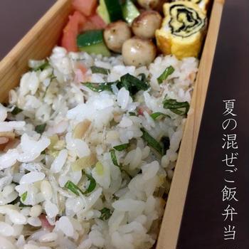 弁当File Vol.402 2016/8/4