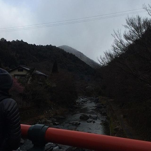愛宕山 H28.2。