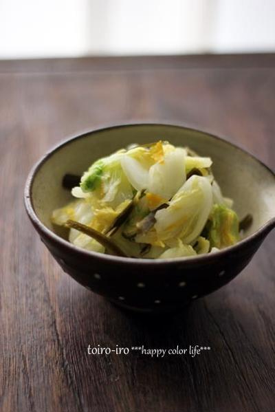 ご飯のお供に♪白菜の浅漬けと、掲載のお知らせ