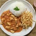 マスタードと生クリームで簡単で優しい味のブラジル風チキンストロガノフ