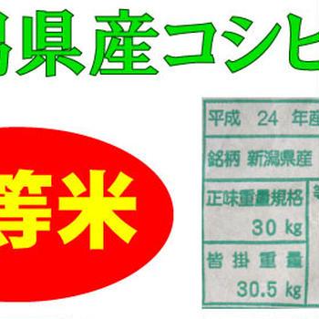 送料無料★新 じゃがいも(きたあかり)4kg+新潟県産コシヒカリ【白米】10kg×1袋