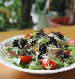 のり海苔サラダ