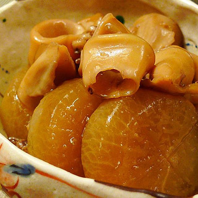 ☆ヤリイカと大根の煮物