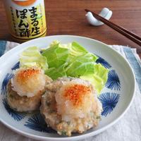 青じそ入り♪豆腐ハンバーグ☆和風おろし