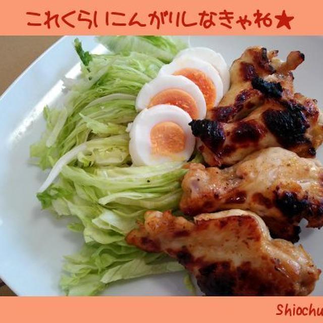 タニタ食堂「タンドリー風」★こんがり