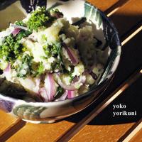 【レシピ】フェンネ香るポテトサラダ