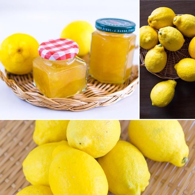 チリ産レモンジャム