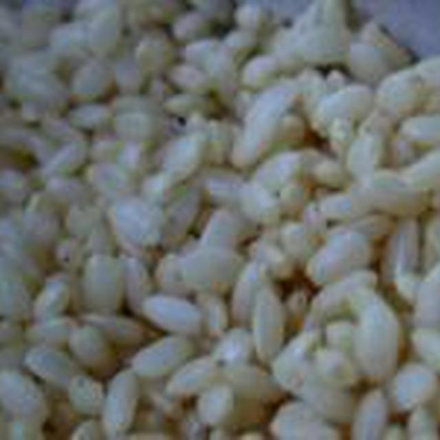 湯立てで白米(483)。。。山形県産つや姫(あいざわ米店)白米と玄米。。。。