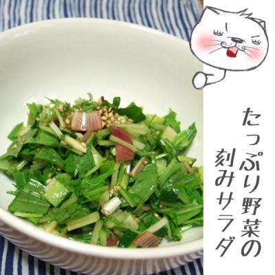 たっぷり野菜の刻みサラダ