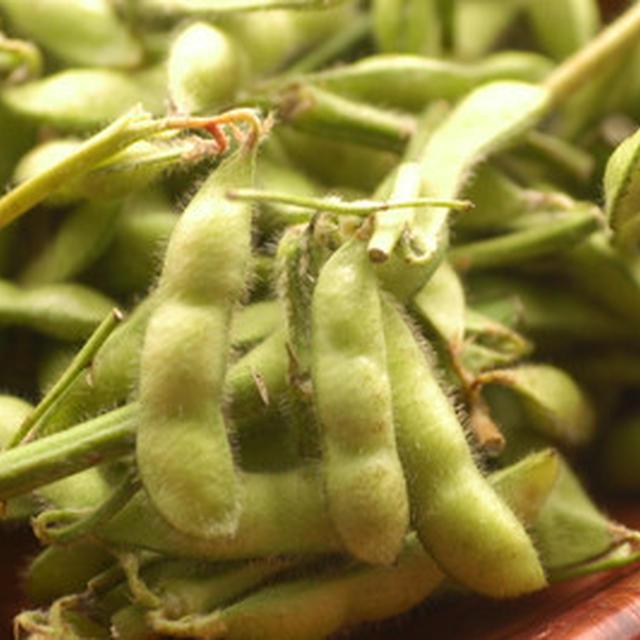 枝豆の『お豆のチカラ』