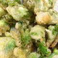 【山菜レシピ】蕗のとうのフリット