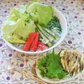 「ヒガシマル」のうどんの素でレタスたっぷり麺 by おいしっぽさん