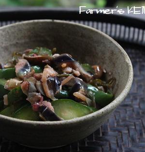 【きゅうりのレシピ】しば漬け風夏野菜のお漬物、きゅうりと高菜の炒め物&今日の景色