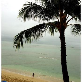 あけましておめでとうございます。&ハワイ一日目