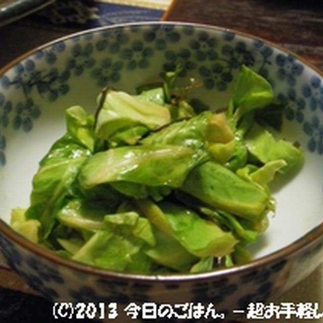 きゃべつのしょうが醤油漬 外葉で作ました~(^_-)-☆