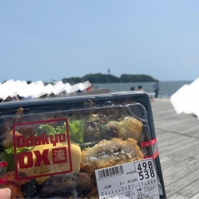 海へお弁当食べに行ってきました