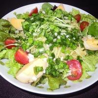 【レシピブログモニター】ごま油×白だし ネギニラ塩ダレの麺サラダ