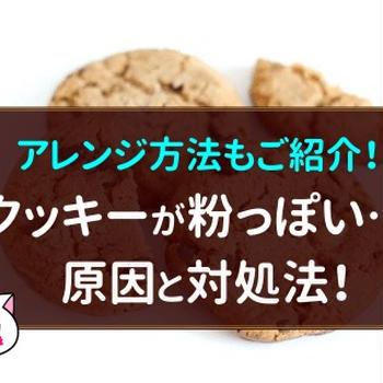 手作りクッキーが粉っぽい!?原因と対処法を知ってサクサクに!