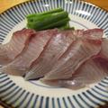 【旨魚料理】サゴシの刺身