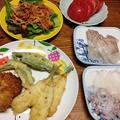 キスの天ぷら。豆鯵のフライ。野菜たっぷり冷やし中華。久しぶりのにゃんこ兄弟