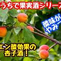 【レシピ】おうちで果実酒シリーズ!酸味がやみつき!あんず酒!