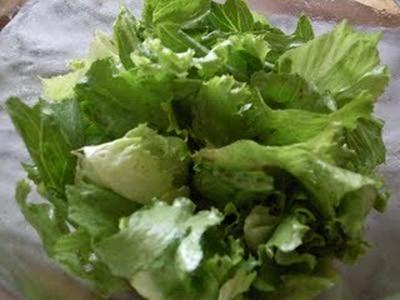 リーフレタスの亜麻仁油醤油サラダとお弁当