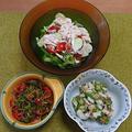 じゃことピーマンの小鉢、ちくわとオクラとミョウガの梅和え、蒸し鶏と野菜のサラダ