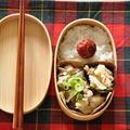 余りがちな乾物で作る☆高野豆腐と玉ねぎの炒め煮がメインの15分節約お弁当