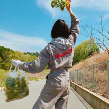山菜ガール!タラの芽とフキを採りに山へ行きました!!