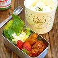 タバスコで♪HOTスペアリブ アイスプラントの半熟卵サラダ お弁当レシピ