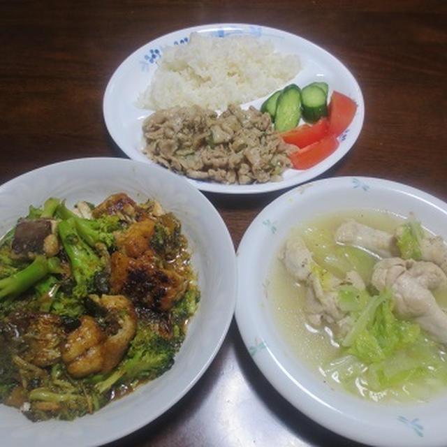 ねぎ塩ポーク、手羽と白菜のスープ、さばとブロッコリ―の炒め煮