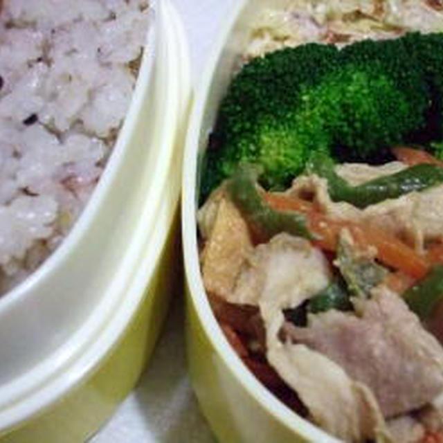 厚揚げ、豚肉、野菜の味噌炒め