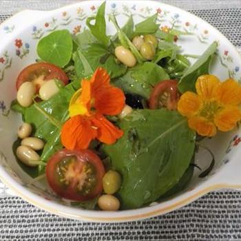 ベビーリーフと蒸し豆のヘルシーサラダ