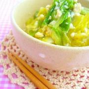 甘くておいし~い!「冬キャベツ」で作る朝食&お弁当おかず5選