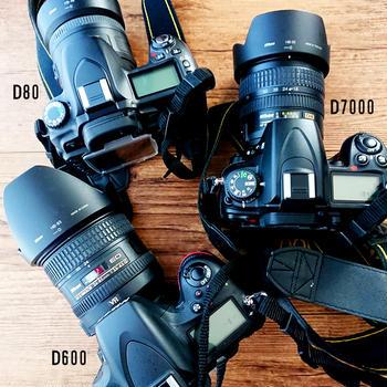 私の大切な一眼レフカメラたち&D7000とD600をメンテに出してみた結果