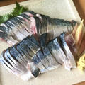 アニサキス対策で安心なしめ鯖の作り方
