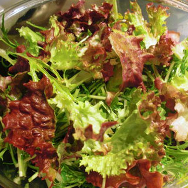 新鮮野菜で癒し効果?