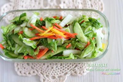 白菜の塩糀浅漬け と反響の大きかった昨日の記事の追記