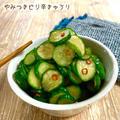 YouTube更新しました!やみつきピリ辛きゅうり♡【#簡単レシピ#きゅうり】
