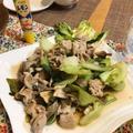 豚肉とチンゲン菜のうま塩炒め
