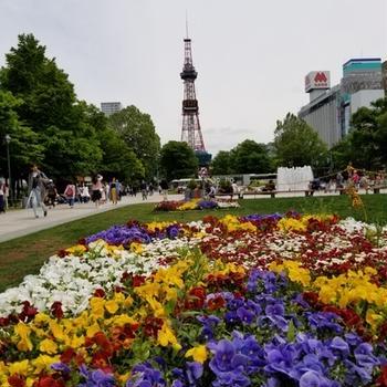 札幌に行ってきました。