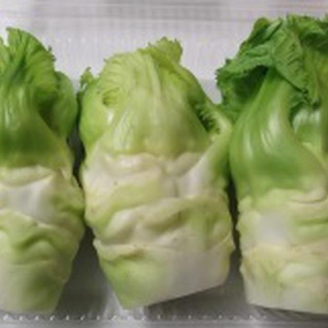 春の新野菜「蕾菜」と豆ごはん・気になったもの