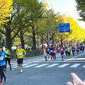 横浜マラソン応援してきました