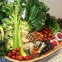 夏の元気を食べよう!信州高原野菜de食育塾