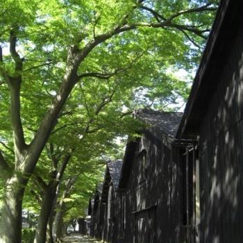 山形の旅201009 ① その風景