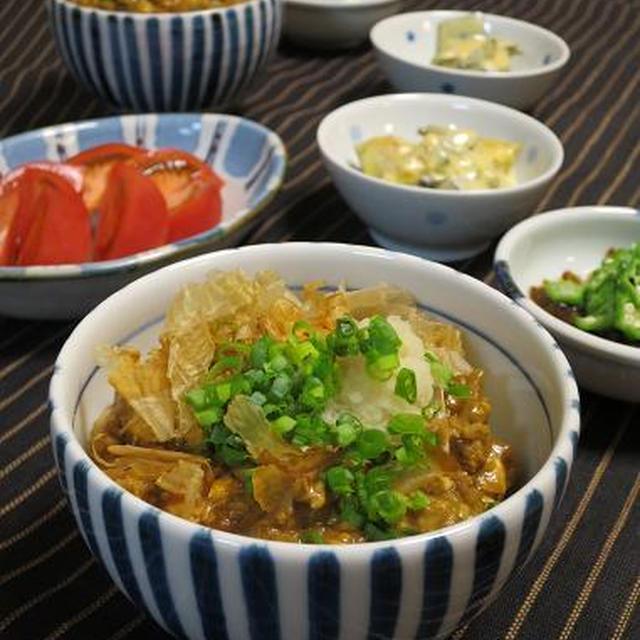 休肝日 ・ すっかりはまった豆腐カレーと今日のオット弁