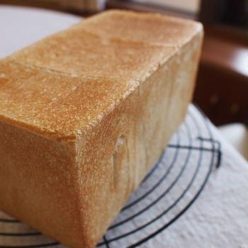 玄米蜂蜜角食で、春のサンドイッチワンプレート!