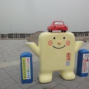 淡路島に水仙を見に行ってきました☆