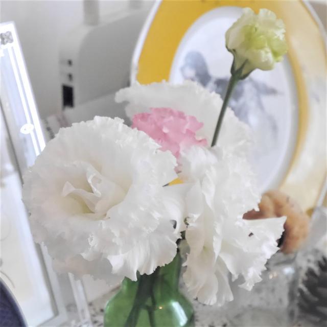 【お買い物】一日一善ならぬ一日1本、お花のある毎日 by 日比谷花壇